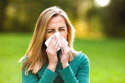 Allergologists: a solution for your allergy ailments