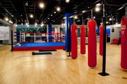 What to look for when choosing a boxing gym