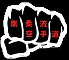 Seishin Martial Arts Academy
