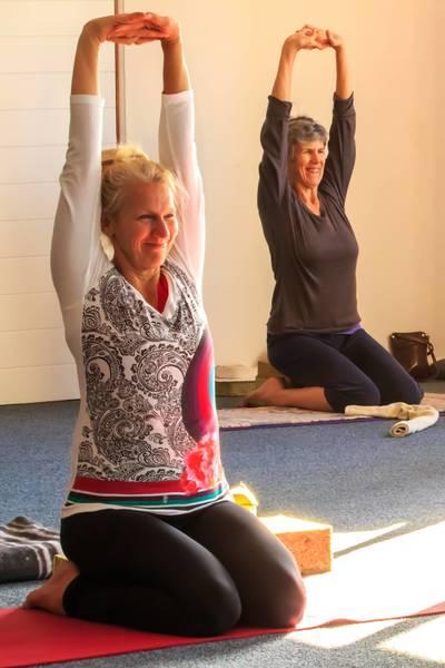 Yoga & Stress Resilience workshop Berea Iyengar Yoga _small